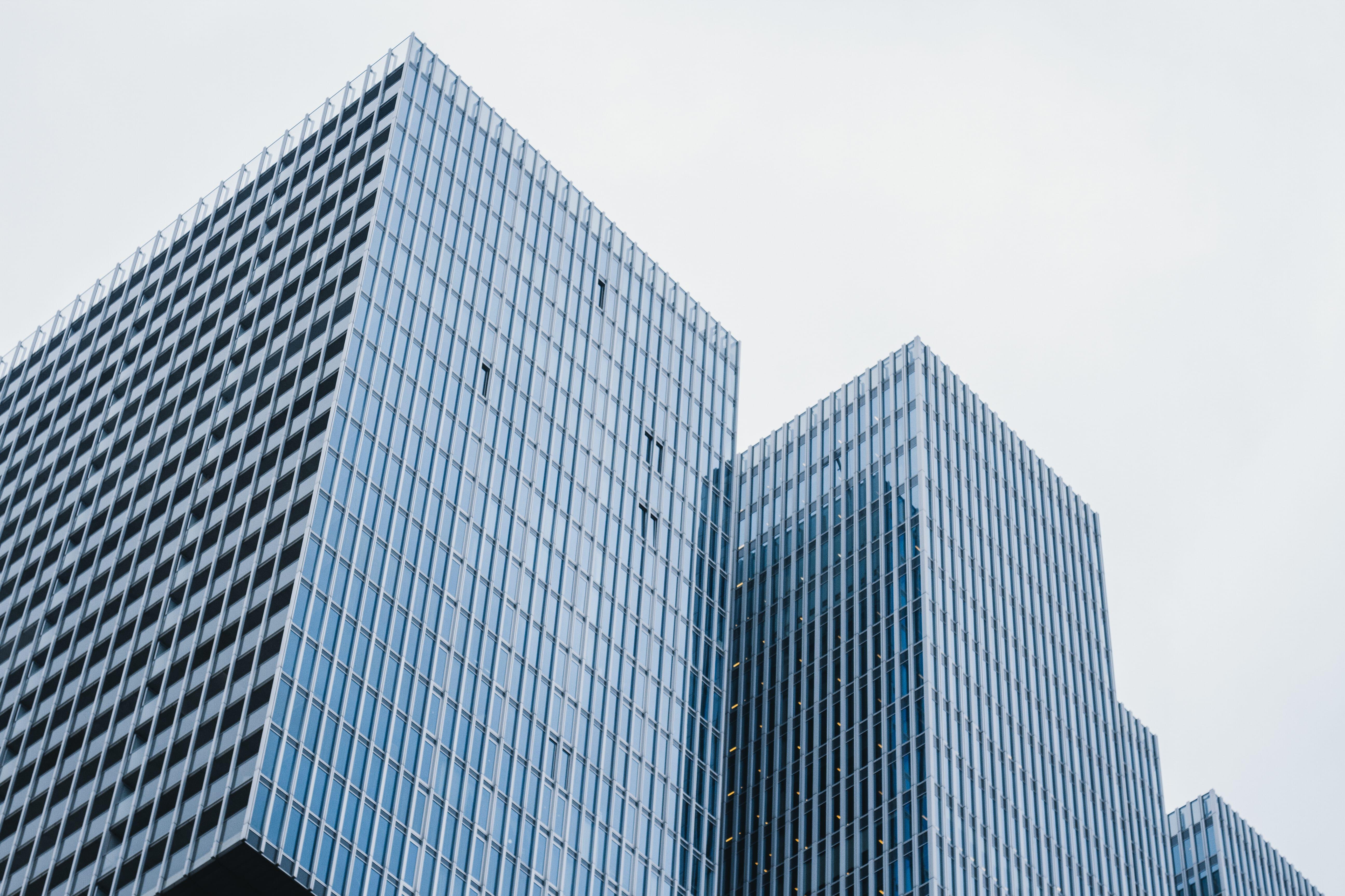 Hoge gebouwen Rotterdam
